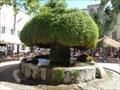 Image for Fontaine Moussue - Salon de Provence - Provence/France