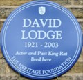 Image for David Lodge - Sydney Road, Richmond, London, UK