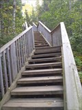 Image for Devil's Kettle Falls Stairway at Judge Magney State Park: Covill, MN