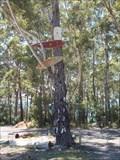 Image for Thong Tree - Bendalong, NSW