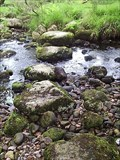 Image for Cataloo Steps, Baggator Brook, West Dartmoor