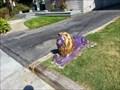 Image for Purple Lion - San Jose, CA