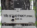 Image for 425m - Tri studynky (prm.) - Ricky, Czech Republic