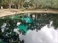 Image for Juniper Springs - Ocala National Forest, FL