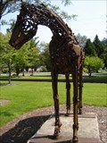 Image for Copper Clad - Issaquah, WA