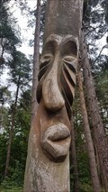Image for Carved tree faces - Sherwood Pines Forest Park, Nottinghamshire