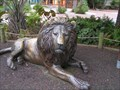 Image for Bronze Lion Pride - Riverbanks Zoo, Columbia, SC