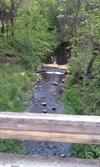 Yreka Creek