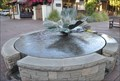 Image for Matilija Poppy Fountain