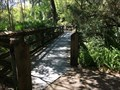 Image for Rainbow Springs Boardwalk - Dunnellon, Florida, USA