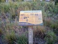 Image for Butterflies - Boundary Creek Natural Resource Area - Moorestown, NJ