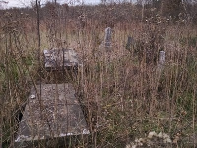 Deal Cemetery - Abandoned, by MountainWoods.  Visible in this photo are the two tombs and three of at least 6 free-standing grave markers.