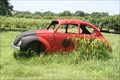 Image for VW Lady Bug, Berry Creek Farm - Blanchard, OK United States