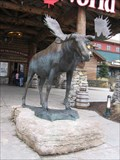 Image for Moose - Vaughan Mills, Ontario/Canada