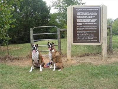 sandy dog park