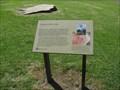 Image for Cedar of Lebanon, Royal Botanical Garden, Sydney, Australia