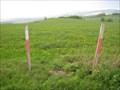 Image for TP southwest of Bertsdorf, SX