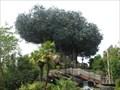 Image for Treehouse, Disneyland Paris, Paris, France