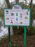 Image for Wildlife at Westport Lake - Stoke-on-Trent, Staffordshire, England, UK.