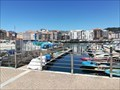Image for Inusual fauna of the port of Sanxenxo: home of otters and magnet for rice - Sanxenxo, Pontevedra, Galicia, España