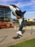 Image for Tsawwassen Ferry Terminal Orca - Tsawwassen, British Columbia, Canada