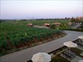 Image for Sula Vineyards