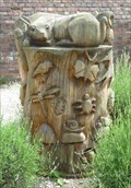 Image for Tree stump, Dunham Massey Hall, Cheshire, England