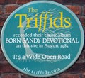 Image for The Triffids - Britton Street, London, UK