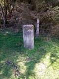 Image for Llyn Brenig Survey Monument, Cerrigydrudion, Conwy, Wales
