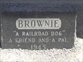 Image for Historic Route 66 - Brownie The Railroad Dog - Victorville, California, USA.