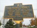 Image for Chalybeate Springs - Brushton, NY