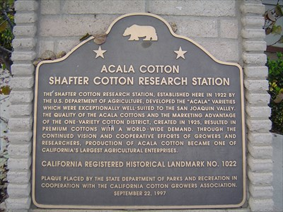 Alcala Cotton Shafter Cotton Research Station