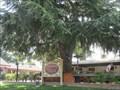 Image for Skipolini's Pizza - Clayton ,CA