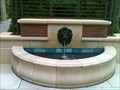 Image for Lion Fountain - Strafford Hills, VA