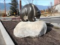 Image for Bear - Creston, British Columbia