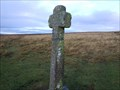 Image for Newleycombe Cross