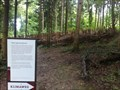 Image for Wald-Labyrinth - Riehen, BS, Switzerland