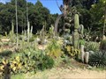 Image for Cactus Garden - Stanford, California