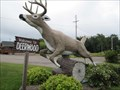 Image for Leaping Stag - Deerwood, Minnesota