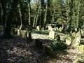 Image for židovský hrbitov / the Jewish cemetery, Písecné,  Czech republic
