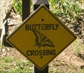 Image for Butterfly Crossing