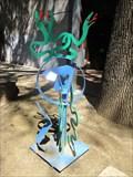 Image for 'Medusa's Mirror Image - Davis, CA