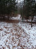 Image for North Ottawa Dunes Park Hiking Trails - Ferrysburg, Michigan