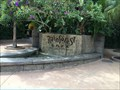Image for Rainforest Cafe Entrance Fountain - Lake Buena Vista, FL