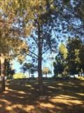 Image for Mrs. Frank J. Hruza - Costa Mesa, CA