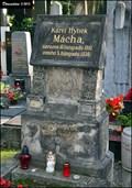 Image for Karel Hynek Mácha - Slavín Cemetery (Prague - Vyšehrad)