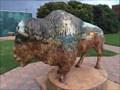 Image for Chickasaw Bison - Davis, OK