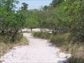 Image for Carolina Beach State Park - North Carolina
