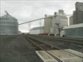 Image for Grain Elevator at Ritzville, Washington