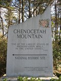 Image for Chenocetah Mountain/Lake Russell Rhododendron Trail